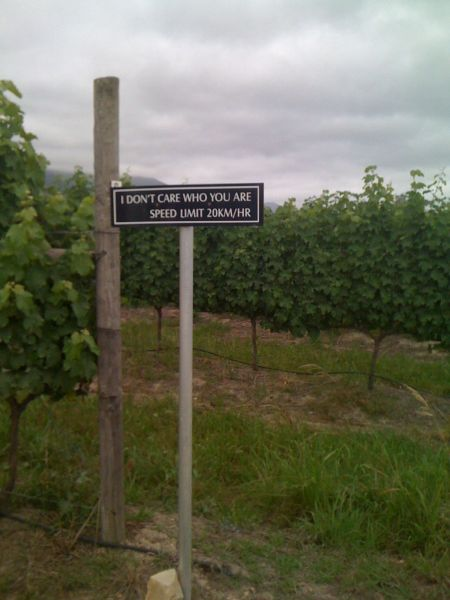 Real reason for this sign: Grapes close to the road get covered in dust and are hard to make wine with. Other reason: People who live on farms feel free to drive really fast and ignore speed limits and this farm is surrounded by other farmers.