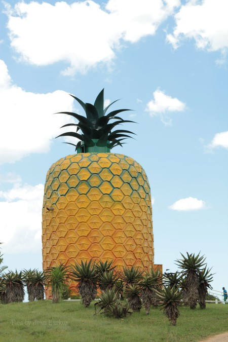 And a giant pineapple? Yes, that's a great idea. It's surrounded by pineapple fields and if you wanna pay R10 you can climb up to survey the fields, or watch a video about pineapple farming. They also sell juice, jam, t-shirts...