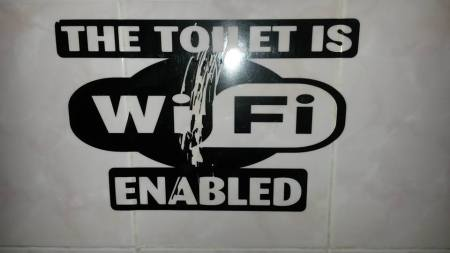 Exactly why would you want a wifi-enabled toilet?