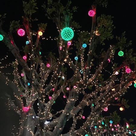 koreanchristmaslights