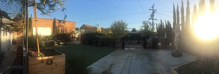 noah-back-garden