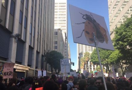 trump-bug